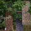 Shawl viscose dierenprint diverse kleuren